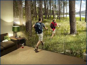 фотообои прогулка в лесу на стене
