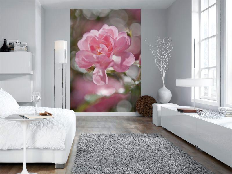 Фотообои с одним большим цветком, фото