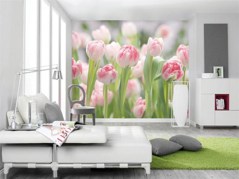фотообои большие тюльпаны фото